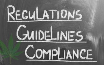Regulations and Security Compliance for Cannabis Businesses