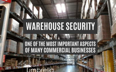 Why Warehouse Security is Important for Business