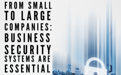 From Small to Large Companies: Business Security Systems are Essential
